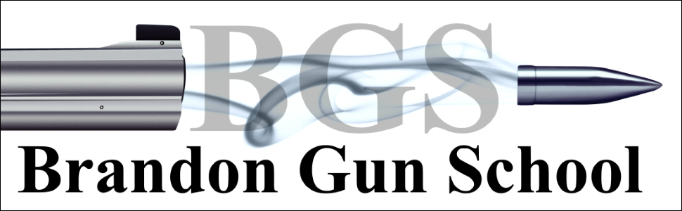 Tampa Florida Gun Glasses – Brandon Gun School