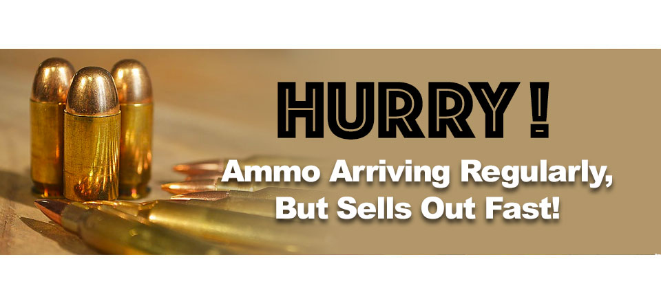 brandon-gun-school-ammo-selling-fast